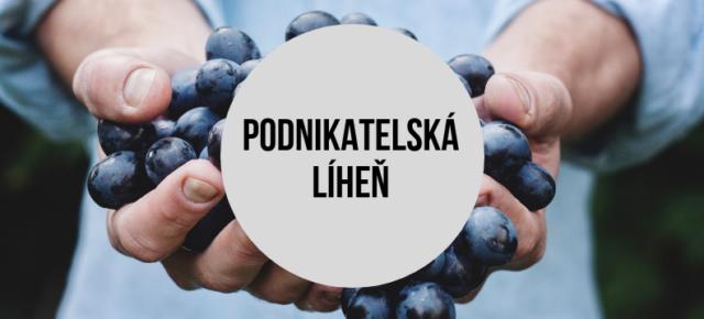 Podnikatelské poradenství a kurzy na Litovelsku a Bouzovsku